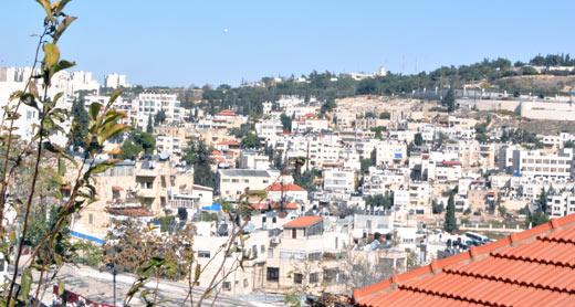 Wadi al-Joz neighborhood. Photo: Noga Kadman, B'Tselem, 10 Nov. 2014